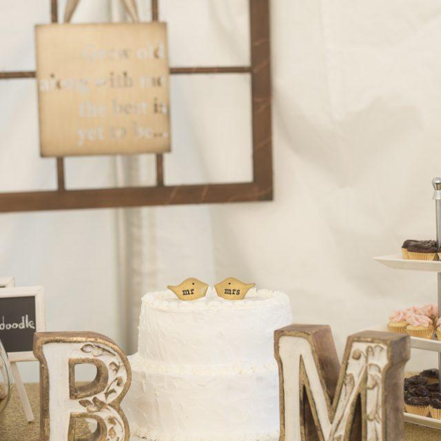 Brittany&Matthew_WeddingPhotography_DanGarrityMedia_135
