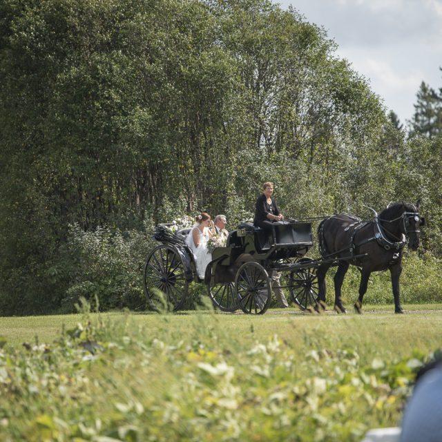 Brittany&Matthew_WeddingPhotography_DanGarrityMedia_51