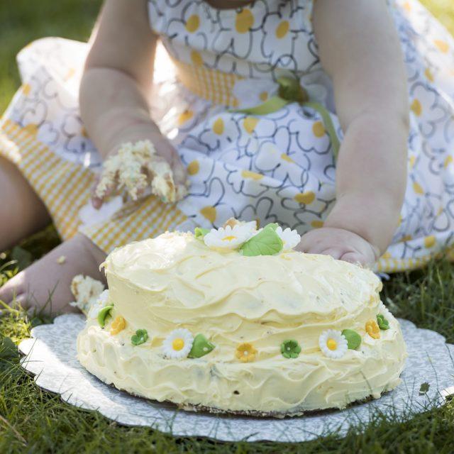 Cake_Smash_Photography_Thunder_Bay_Dan_Garrity_Media_42
