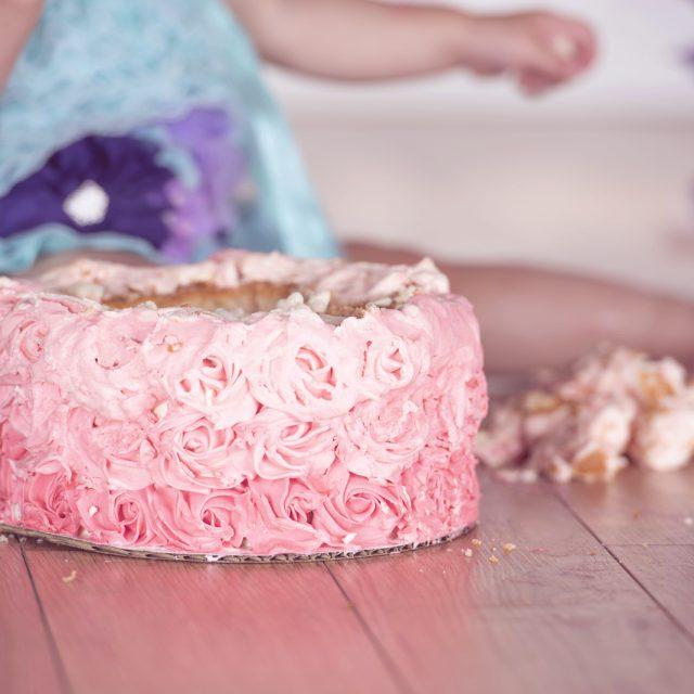 Cake_Smash_Photography_Thunder_Bay_Dan_Garrity_Media_75
