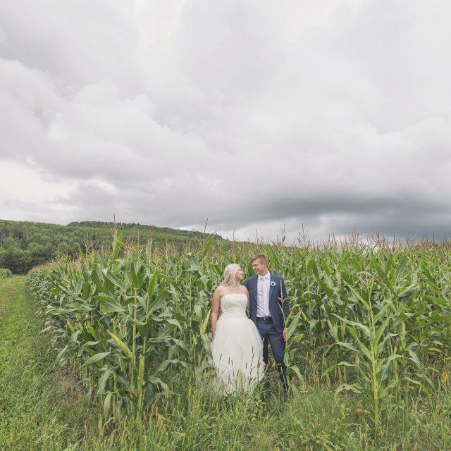 Wedding_Photography_Dan_Garrity_Media_117