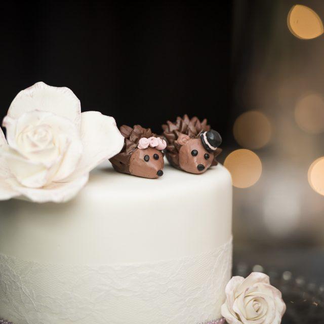Wedding_Photography_Dan_Garrity_Media_206